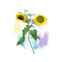 Two Sunflowers painting