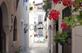 Narrow old town street of Badajoz