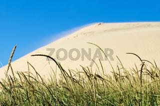 Sanddünen von Rubjerg Knude in Dänemark