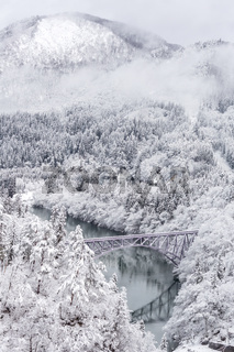 Winter landscape train