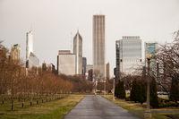 Downtown Chicago Illinois Skyline Stark Winter Park Trees