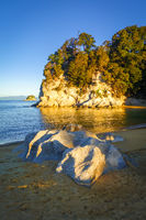 Creek at sunset in Abel Tasman National Park, New Zealand