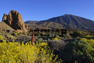 Roques de Garcia, Pico del Teide, Las Canadas, bei Sonnenaufgang