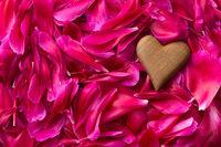 Heart on peony petals background.