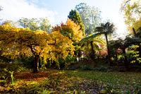 Alfred Nicholas Memorial Gardens