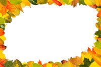 Rahmen aus bunten Blättern