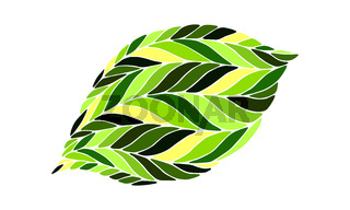 vector image of a leaf in shades  green on  white background.