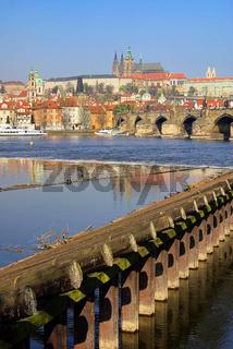 Prag Dom - Prague cathedral 07