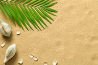 Summer Background with Green Palm Leaf, Fish and Shells