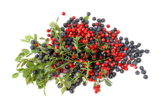Bilberries and cranberries
