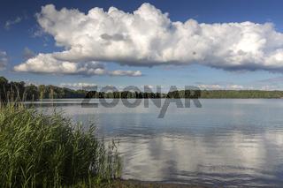 Wurlsee in der Uckermark, Deutschland