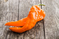 Orange pepper vegetable.