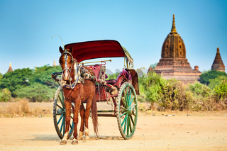 Horses cart waiting for tourist. Bagan,Myanmar