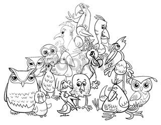 birds group cartoon illustration coloring book