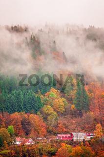 Hillside homes in Bergen in autumn