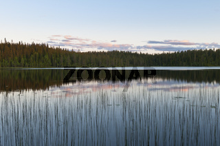 Abendstimmung an einem Waldsee, Rena, Hedmark, Norwegen