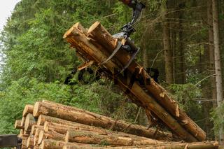 Blochholz mit Kran auf Holztransporter laden - Forstwirtschaft