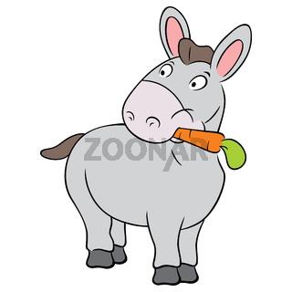 Cute donkey