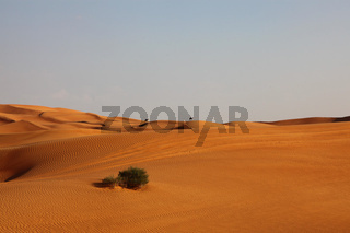Lonely Desert Dunes With Camels In The Distance