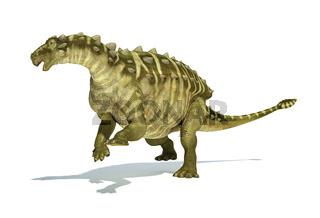 Talarurus dinosaur, photorealistic and scientifically correct representation. Dinamic view.