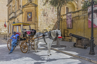 Horse and Carriage, Outside, Palace Of Grand Master,Mdina Malta