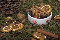 Katzennapf mit Weihnachtsdekoration.Zimt, Nüssen, Orangenschalen