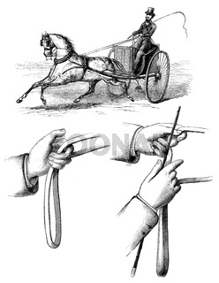Methods of guiding horses by pulling on its reins