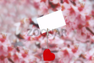 Heart holder with white paper over pink