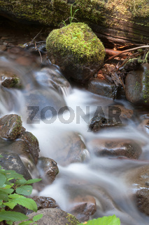 Water Flows Down Mossy Brook Wild Forest Stream Waterfall