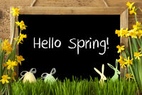 Narcissus, Easter Egg, Bunny, Text Hello Spring