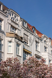 Jugendstilfassaden in Hamburg-Harvestehude mit Magnolien