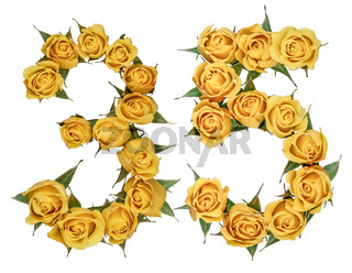 Arabic numeral 35, thirty five, from yellow flowers of rose, isolated on white background