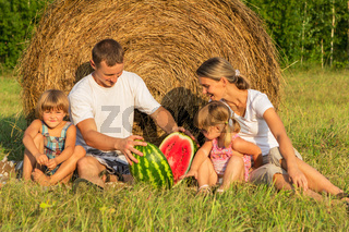Family on picnic in the field