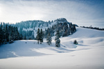 Winter Landscape in Austria