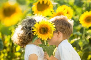 Children hiding by sunflower