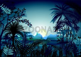 Jungle bei Nacht.eps