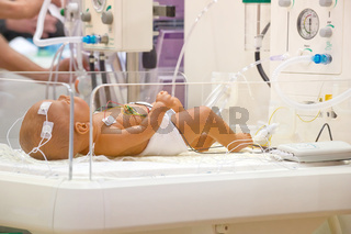 Baby im Krankenhausbettchen Newborn in a hospital bed