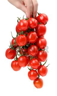 Bunch cherry tomatoes in hand