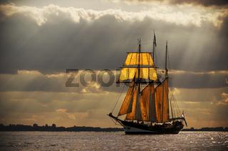Dreimaster auf der Elbe
