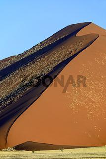 riesige Sandduenen im letzten Abendlicht,  Namib Naukluft Nation