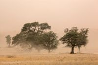 Sand storm