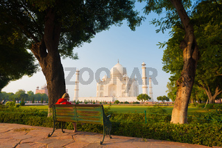 Taj Mahal Framed Park Bench Grass Trees Shrubs H