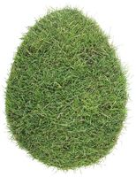 Egg Shape of Grass Turf Cutout