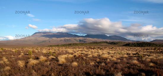 Landschaft im Tongariro Nationalpark