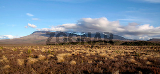 Landschaft im Tongariro Nationalpark