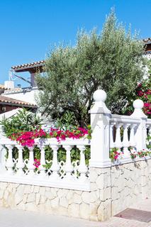 Garten eines Wohnhauses
