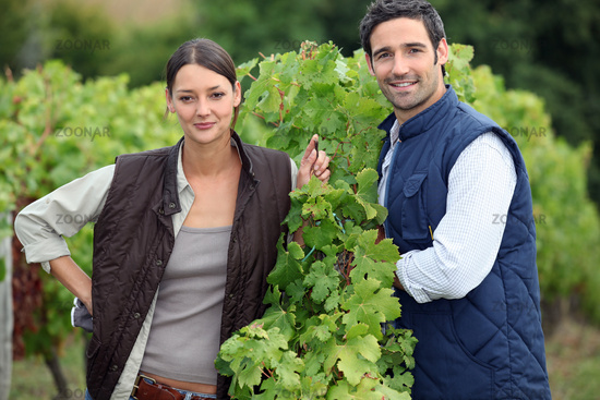 Smiling couple working in a vineyard