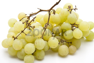 Wein Trauben