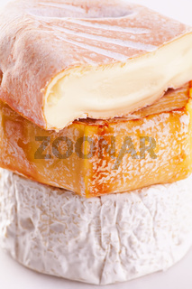 Soft mold cheese