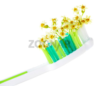 Toothbrush with tiny flowers